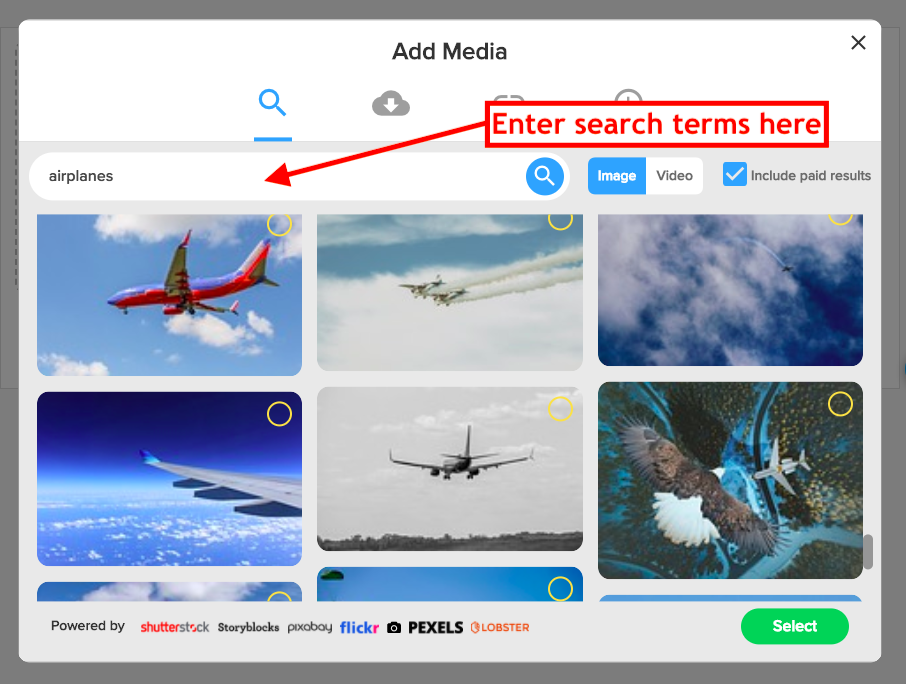 Search terms inside Rocketium Editor to get Lobster assets